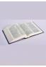 Біблія для молоді (Синодальный переклад)
